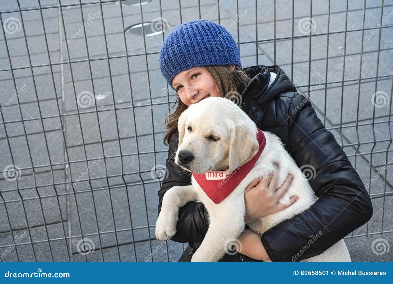 Cães de cachorrinhos de Mira