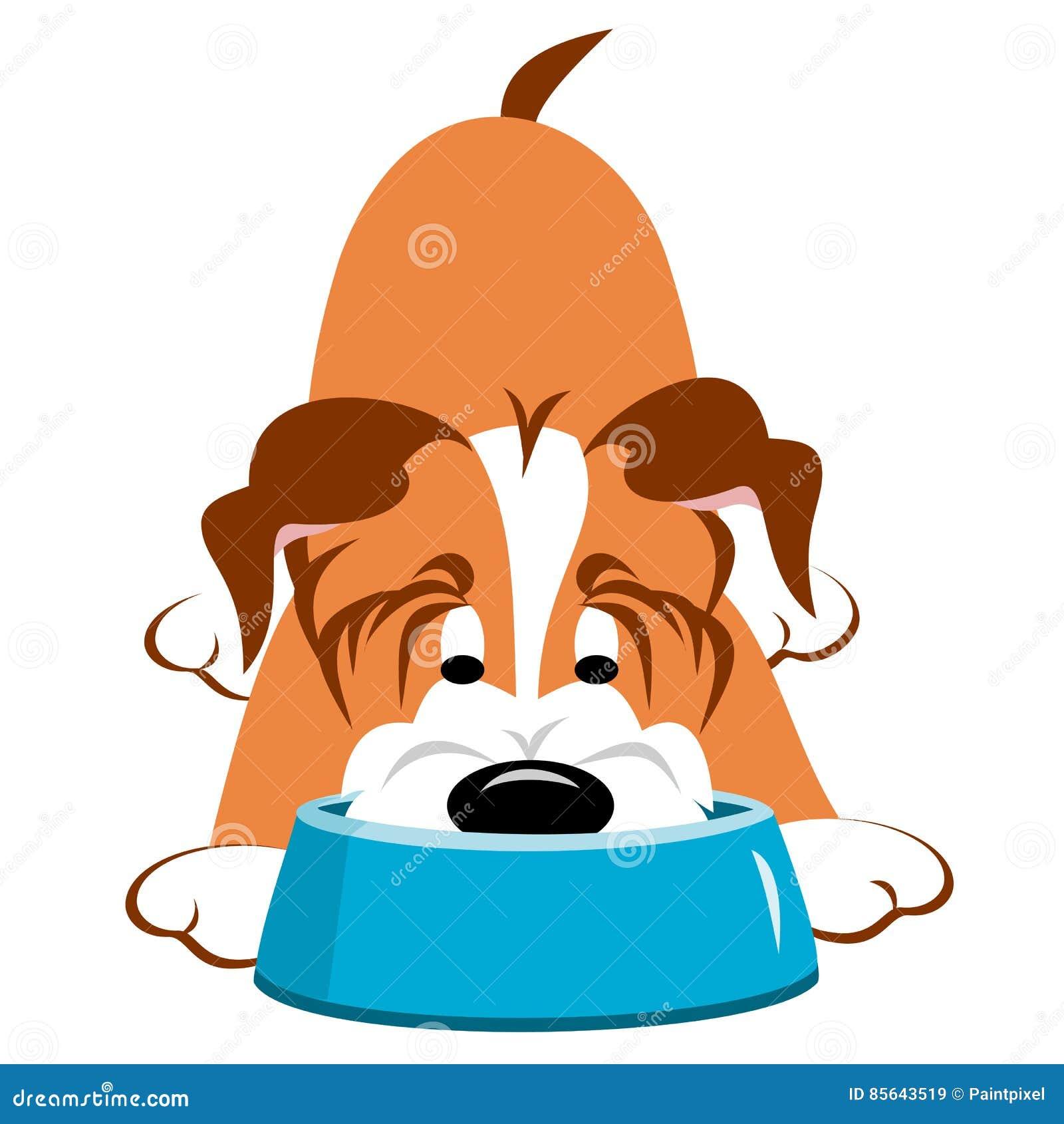 Cão com bacia