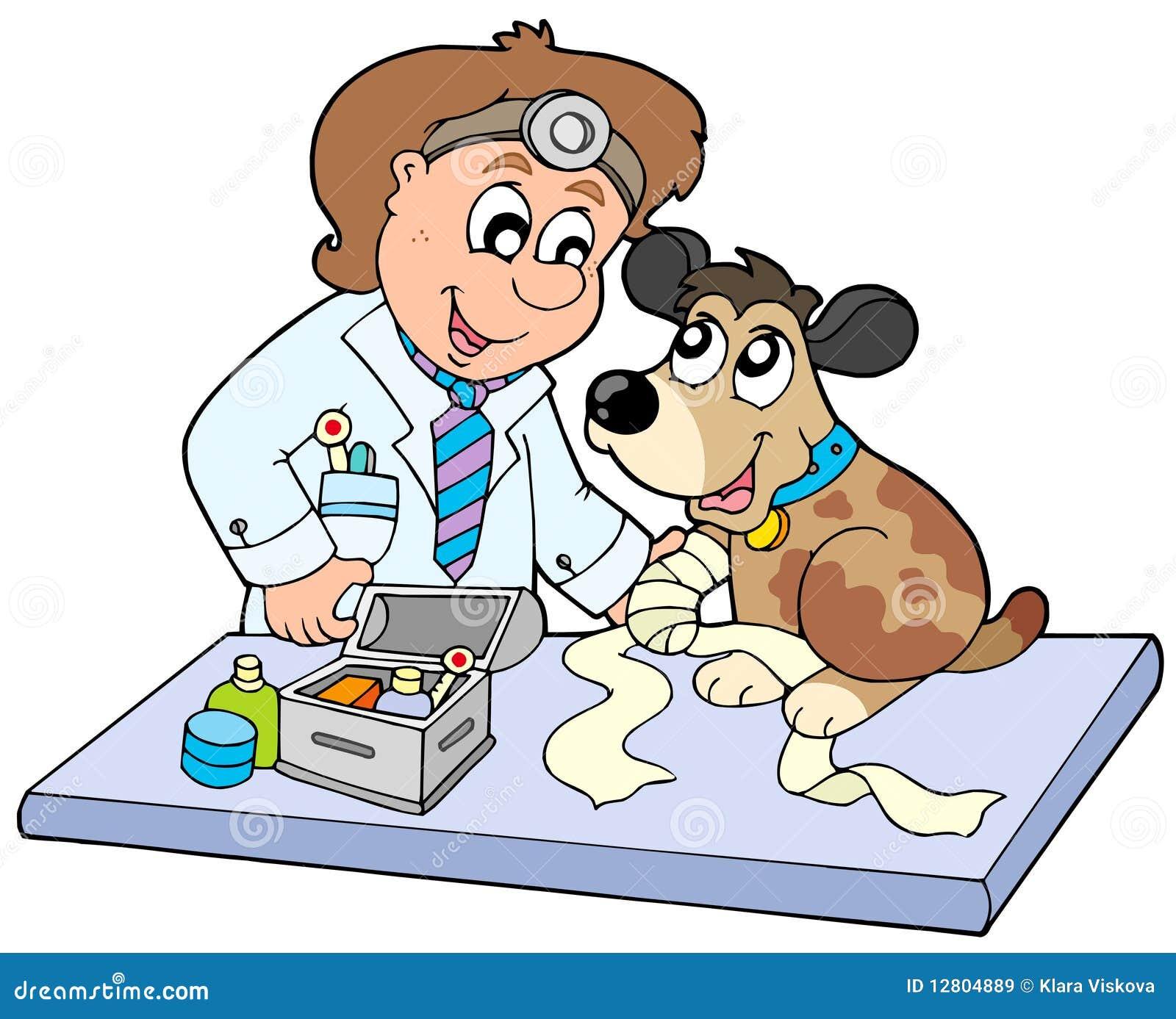 Cão com a pata doente no veterinário