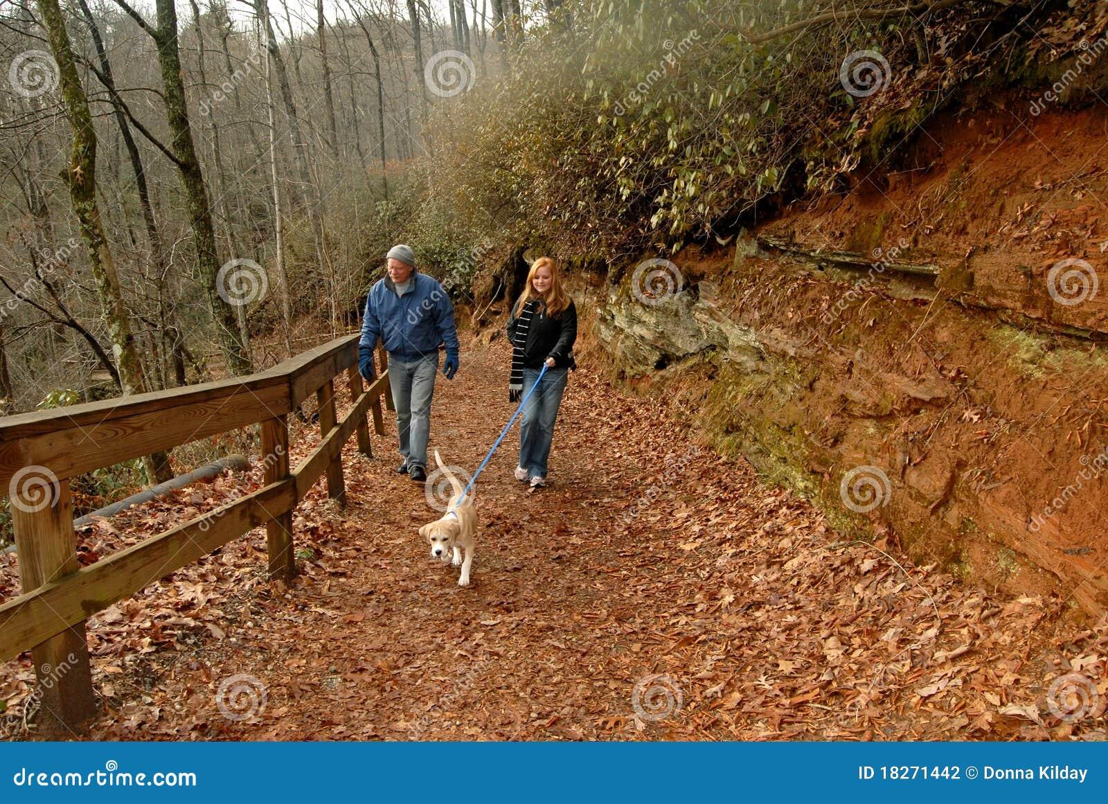 Cão de passeio no outono