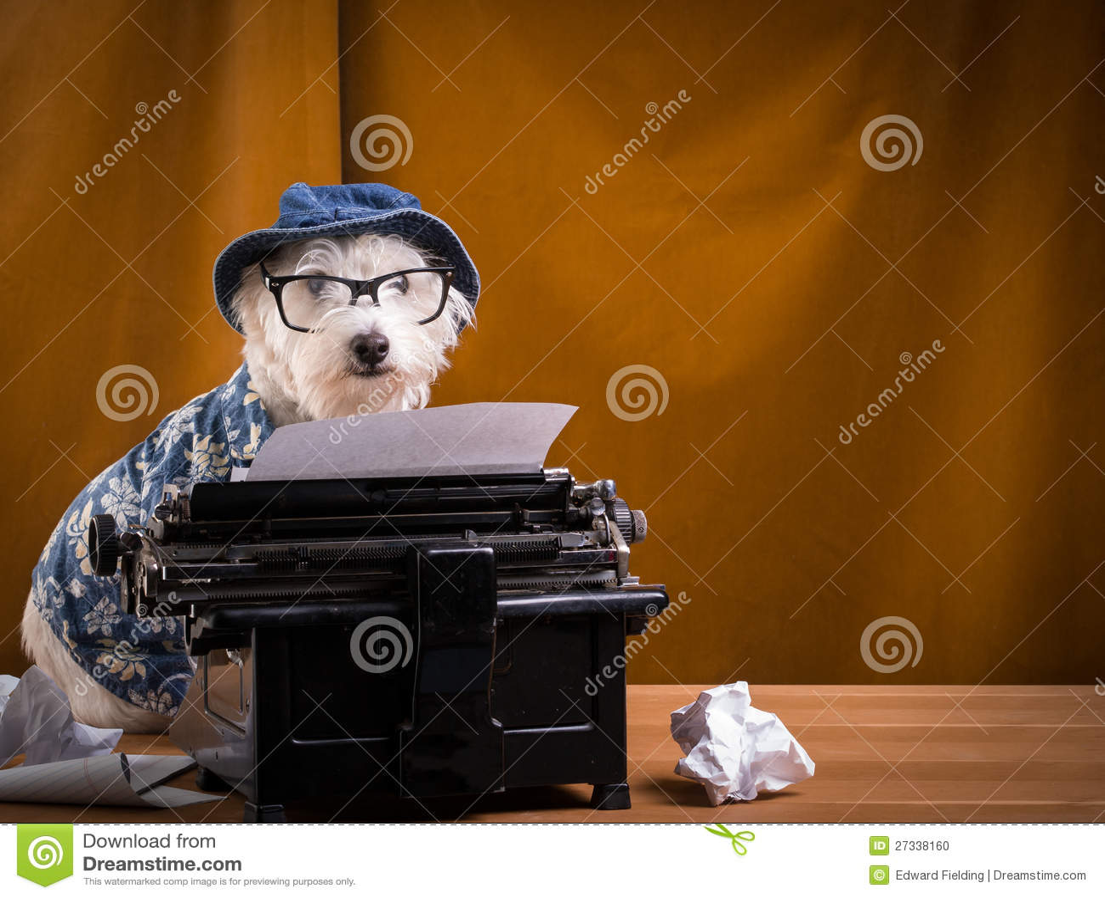 Cão do journalista