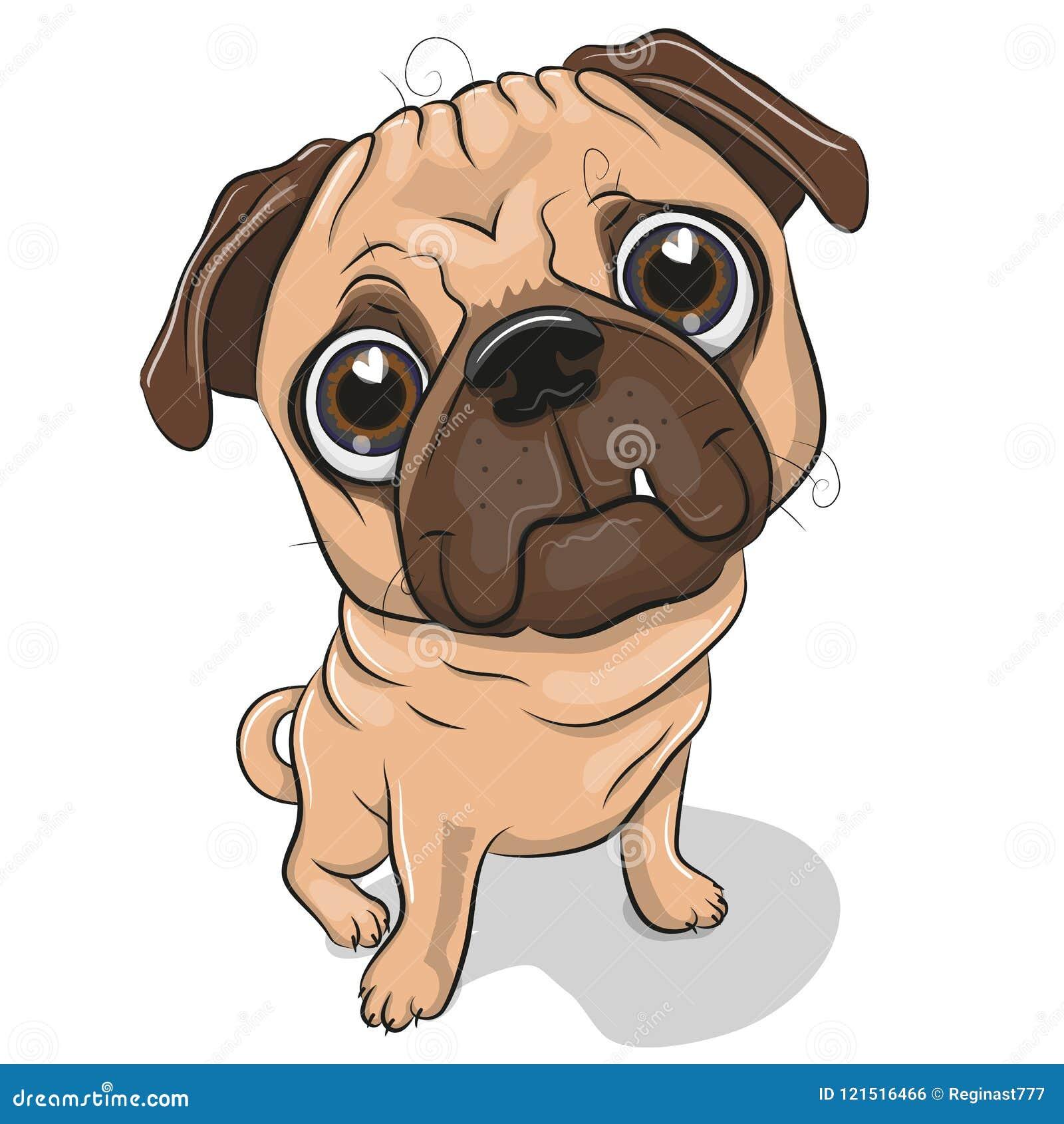 Cão do Pug dos desenhos animados isolado em um fundo branco