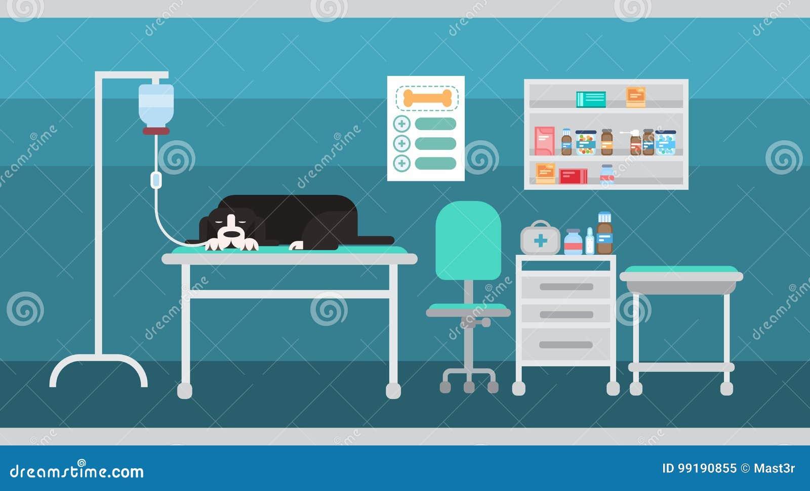 Cão na clínica do veterinário do interior médico do hospital do auxílio veterinário