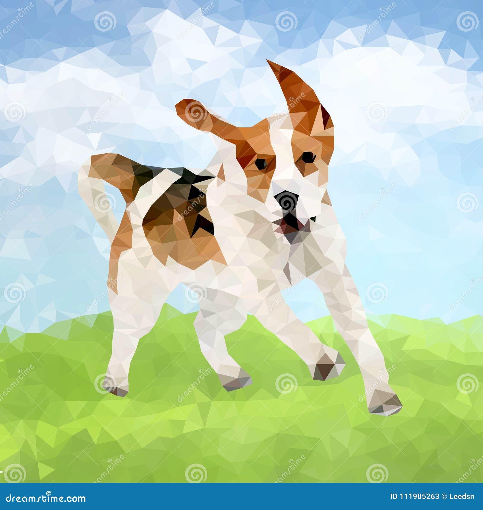 Cão poli Outdoors-04