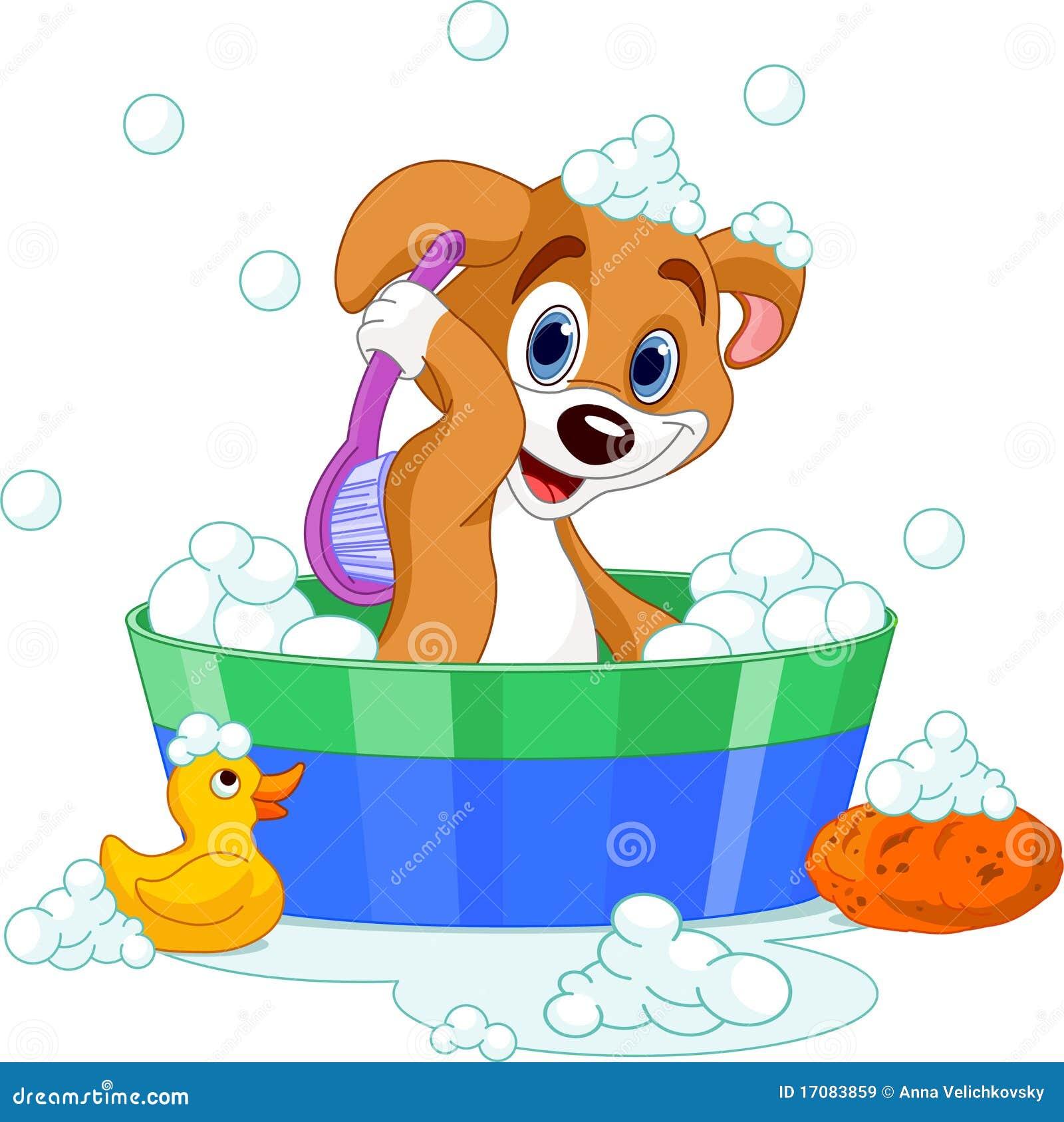 Cão que tem um banho