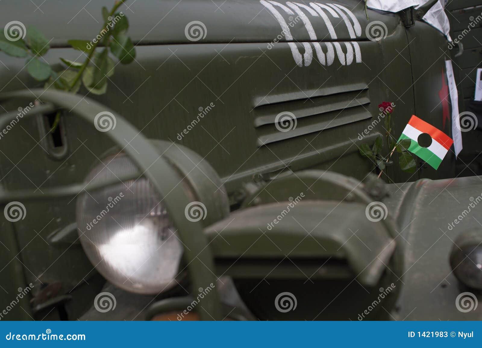 Célébration de 1956, Hongrie