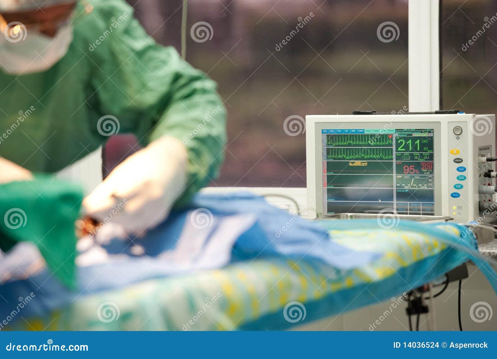 Céntrese en un monitor de la vida para un gato bajo anestesia