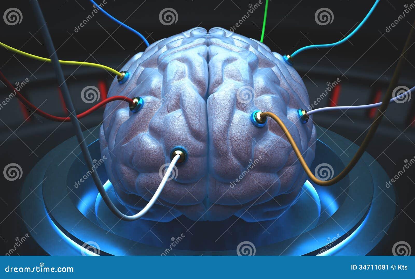 Cérebro da ciência