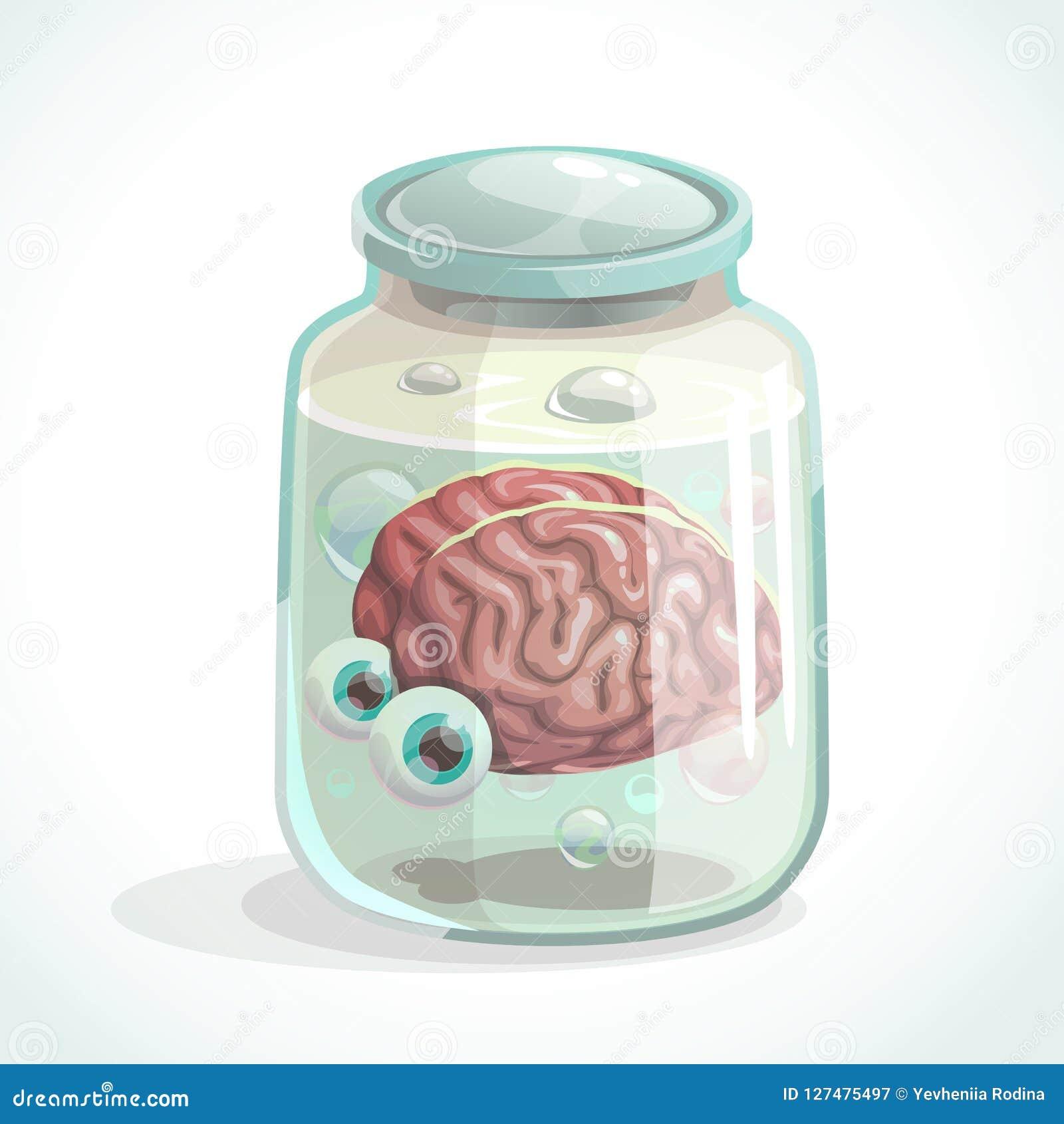 Cérebro humano e olhos no frasco