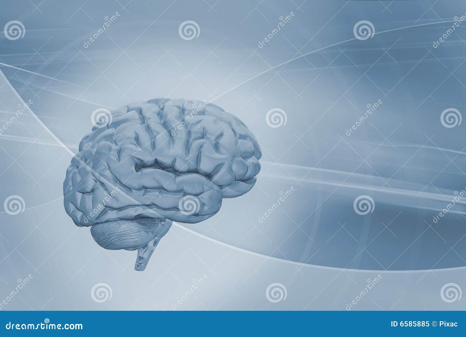 Cérebro no fundo abstrato
