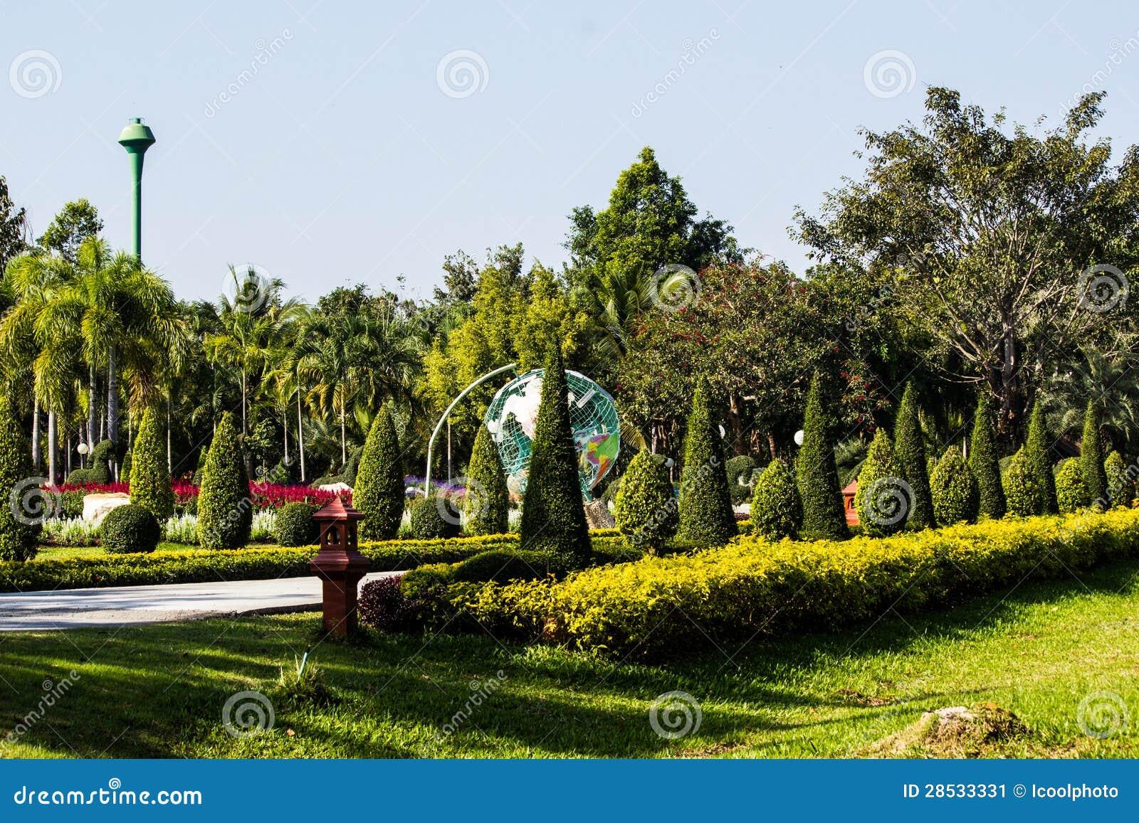 Césped verde en parque de la ciudad