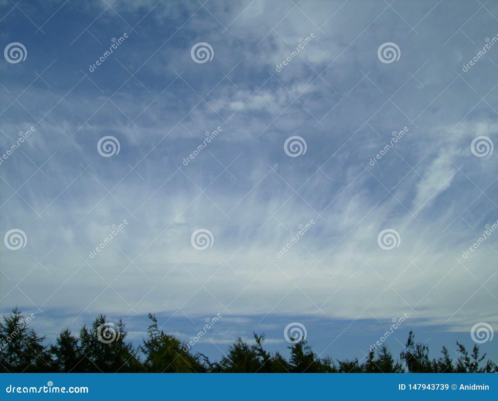 Céu azul com as nuvens plumeous incríveis