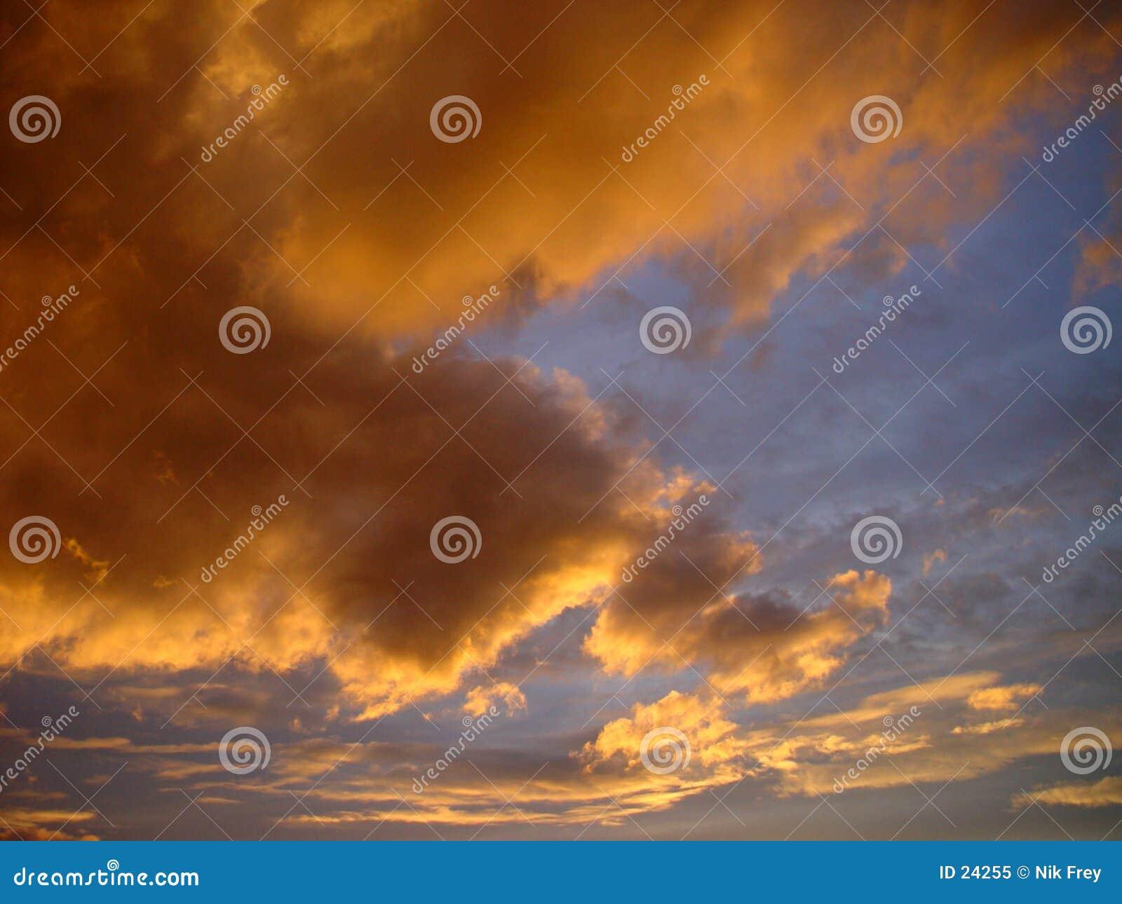 Céu da noite