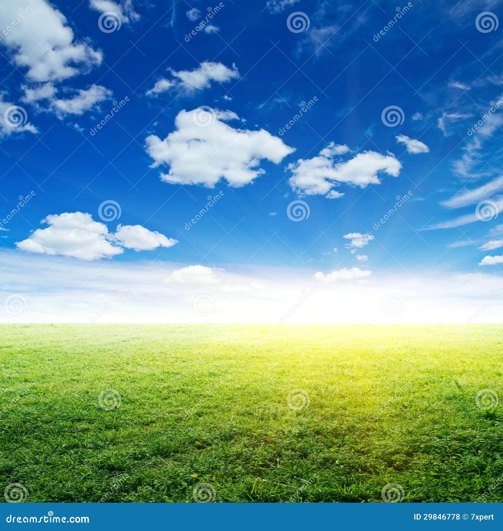 Céu e grama