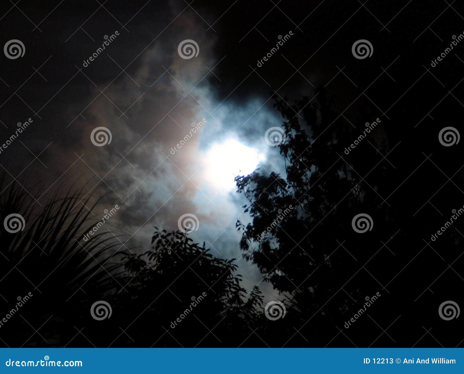 Céu nocturno