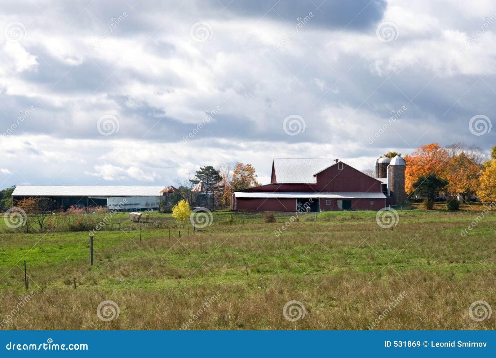 Céu sobre a exploração agrícola.