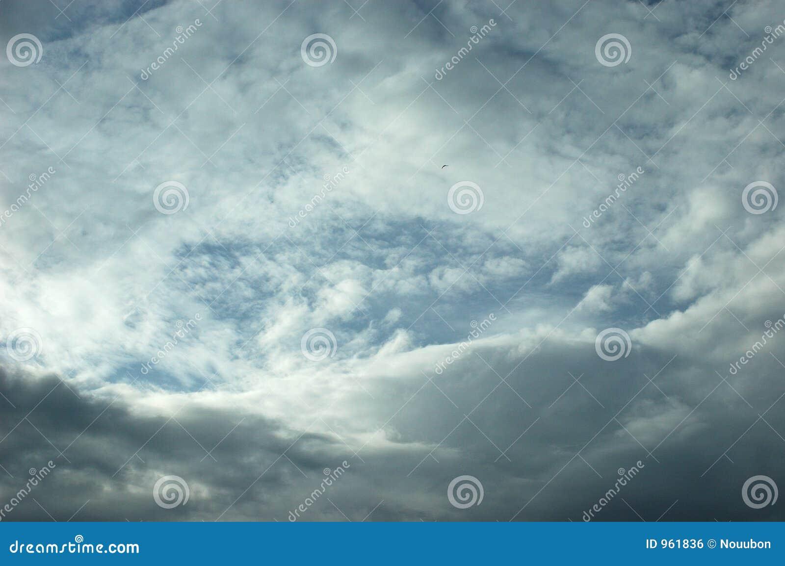 Círculo da nuvem com o Whitespace para a cópia.