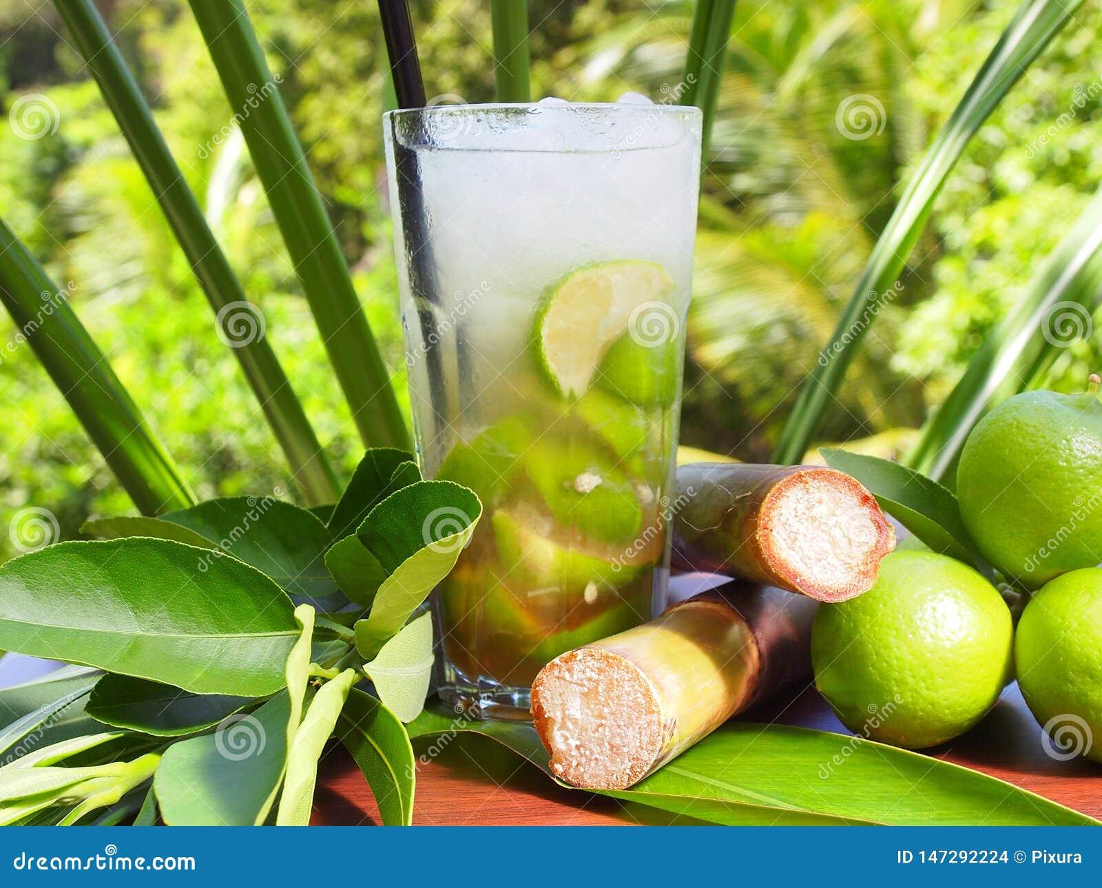 Cóctel tropical de Caipirinha con la cal y Sugar Cane