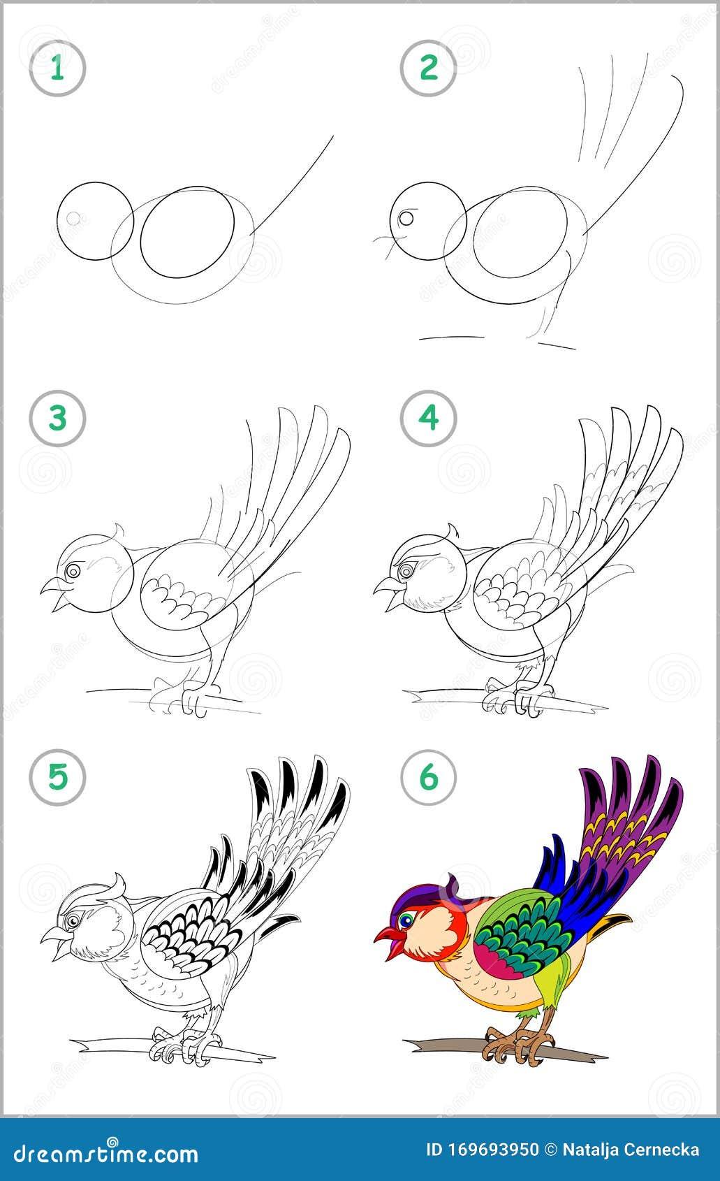 Cómo Dibujar Paso A Paso A Un Tigre De Juguete Lindo Página Educativa Para Niños Volver A La Escuela Ilustración Del Vector Ilustración De Animal Retroceder 169693950