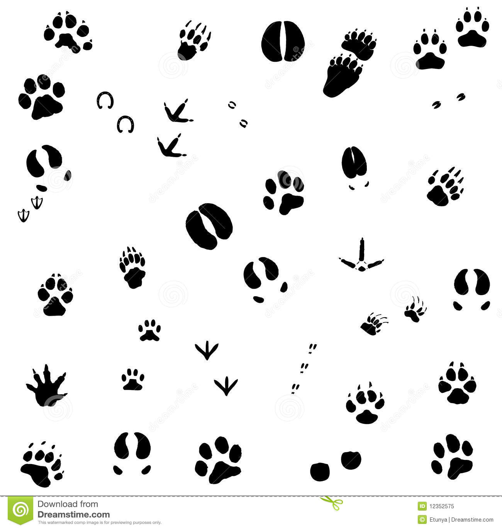 Cópias do pé animal