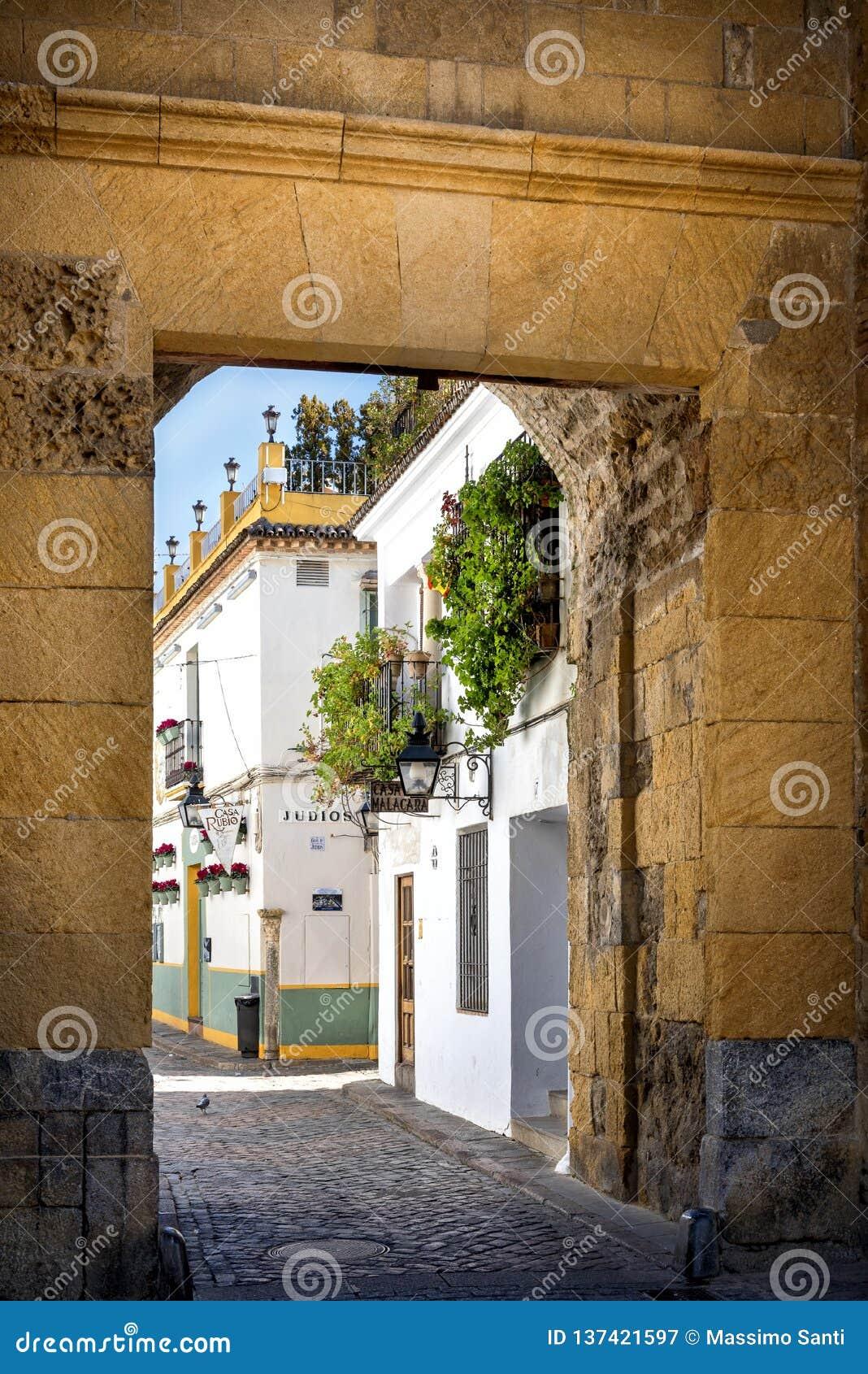 Córdova: rua típica velha no Juderia com plantas e flores Andalucia, Spain