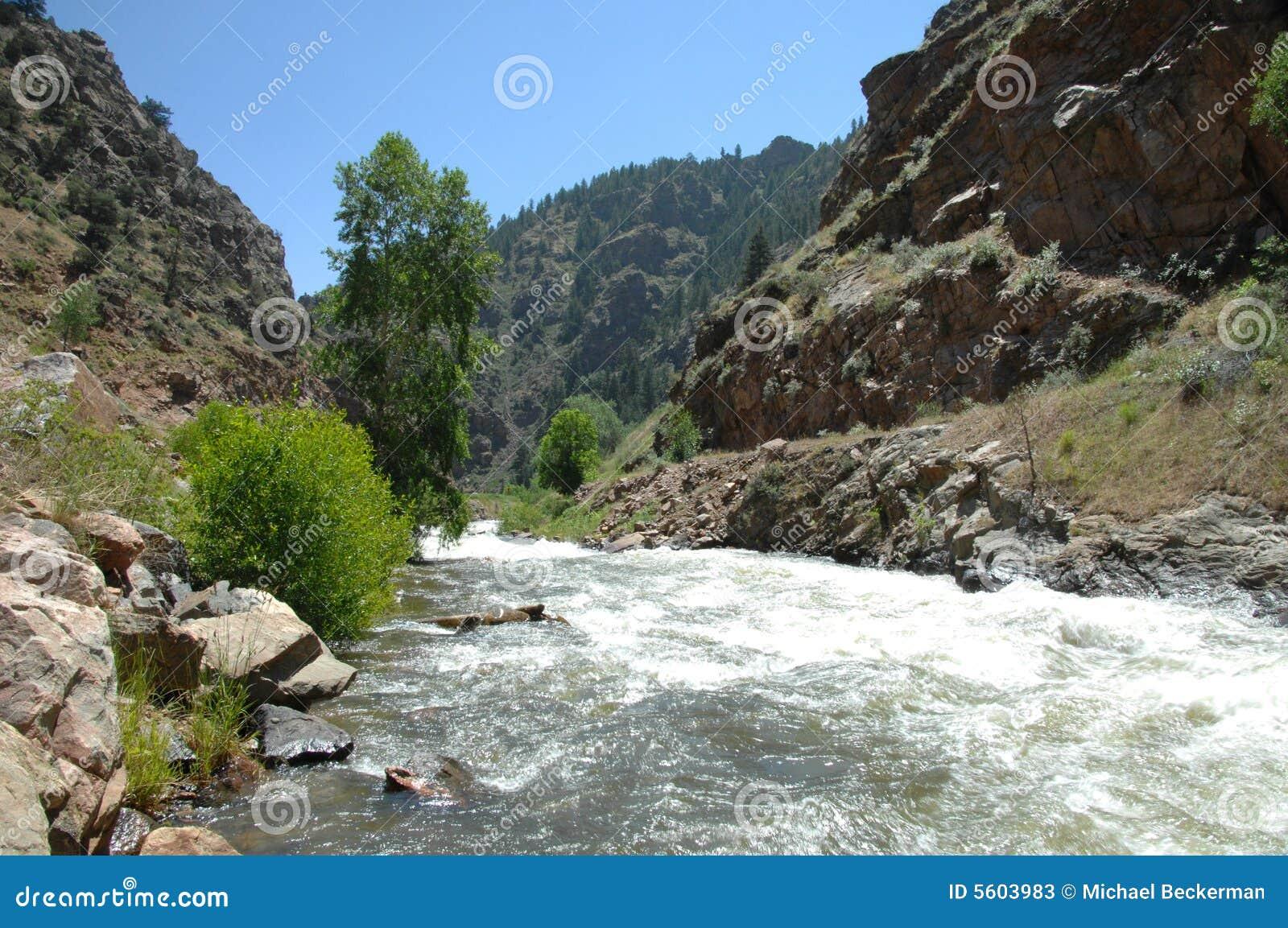 Córrego 5 da montanha de Colorado