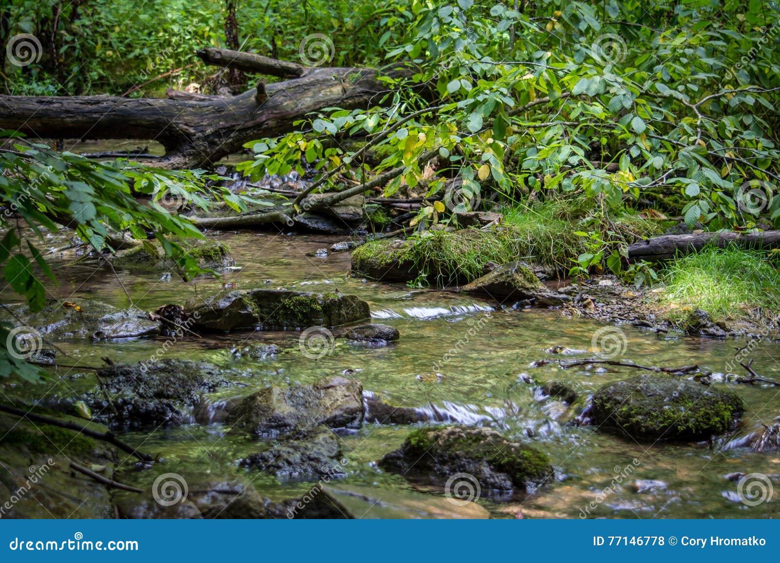 Córrego bonito