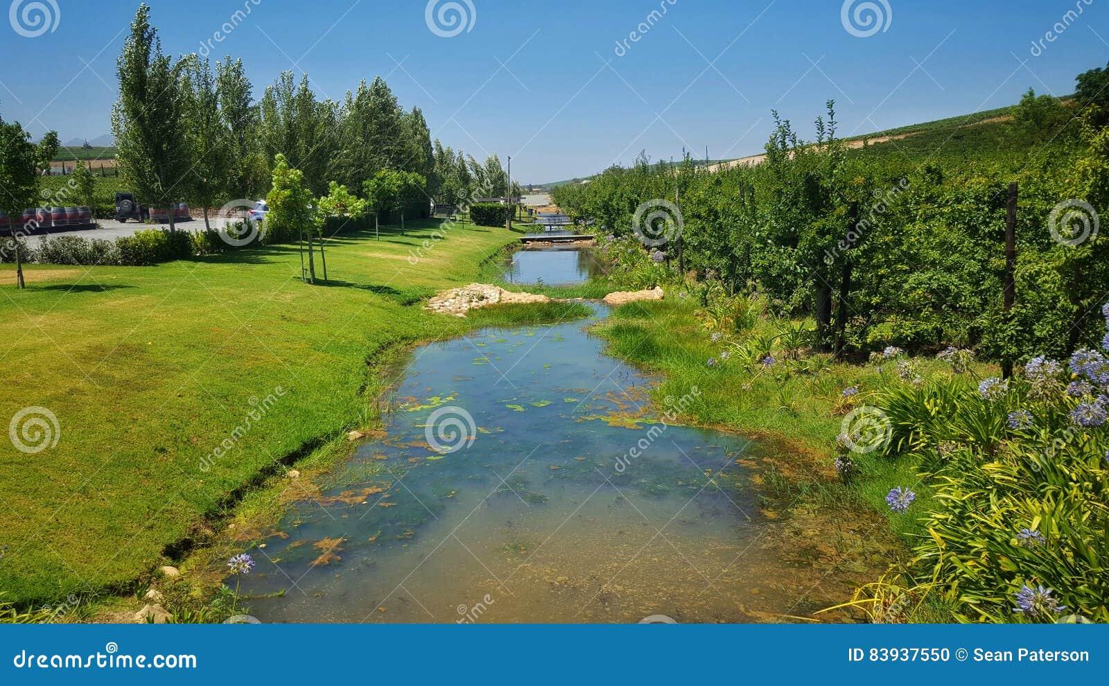 Córrego do rio da exploração agrícola