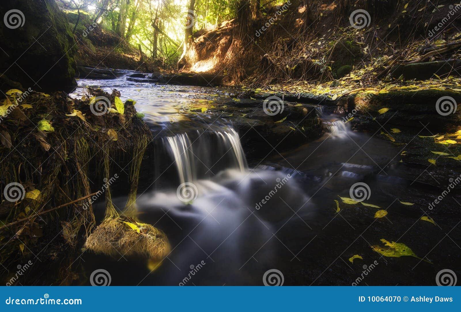 Córrego ideal