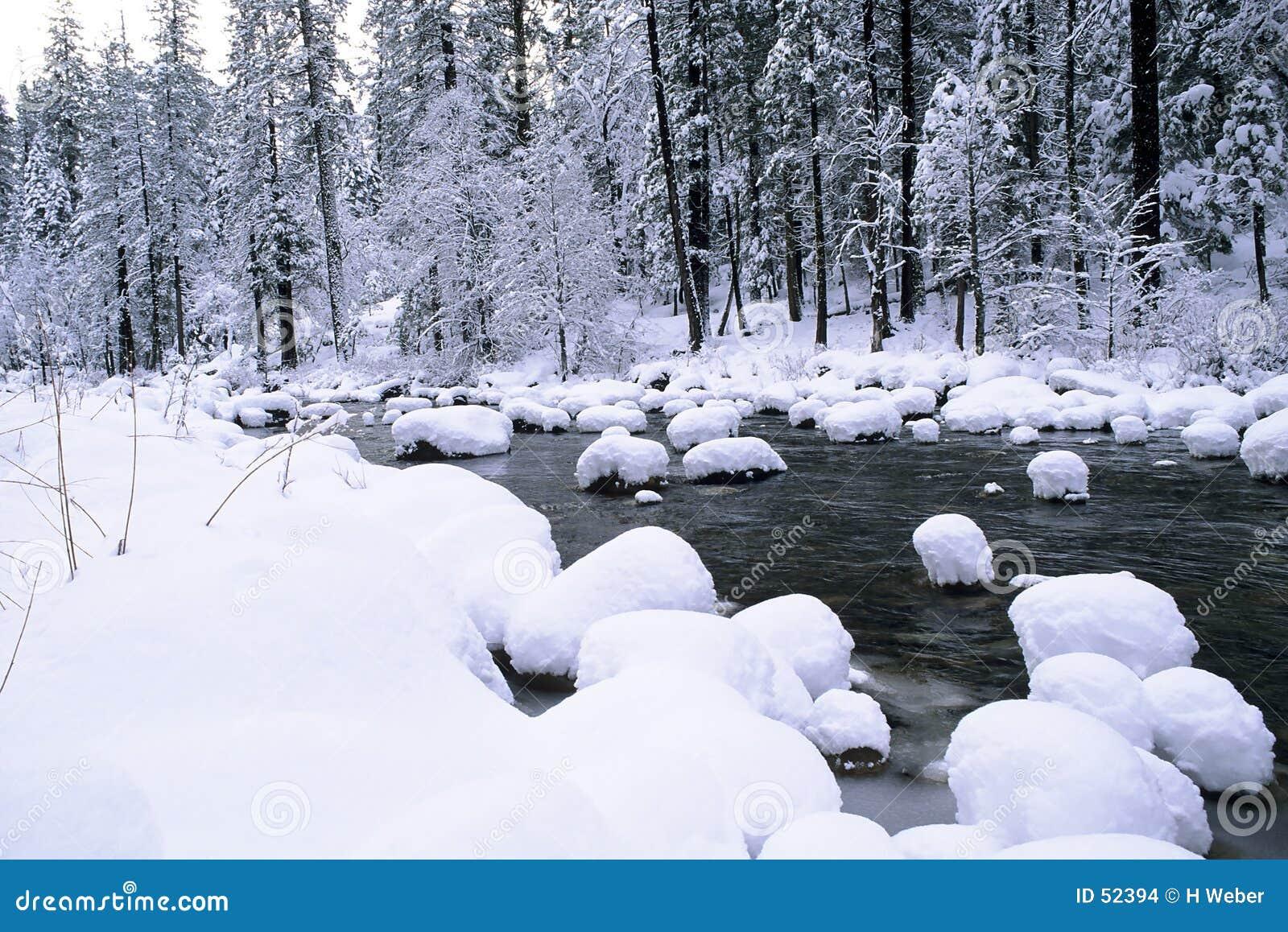 Cônes de neige