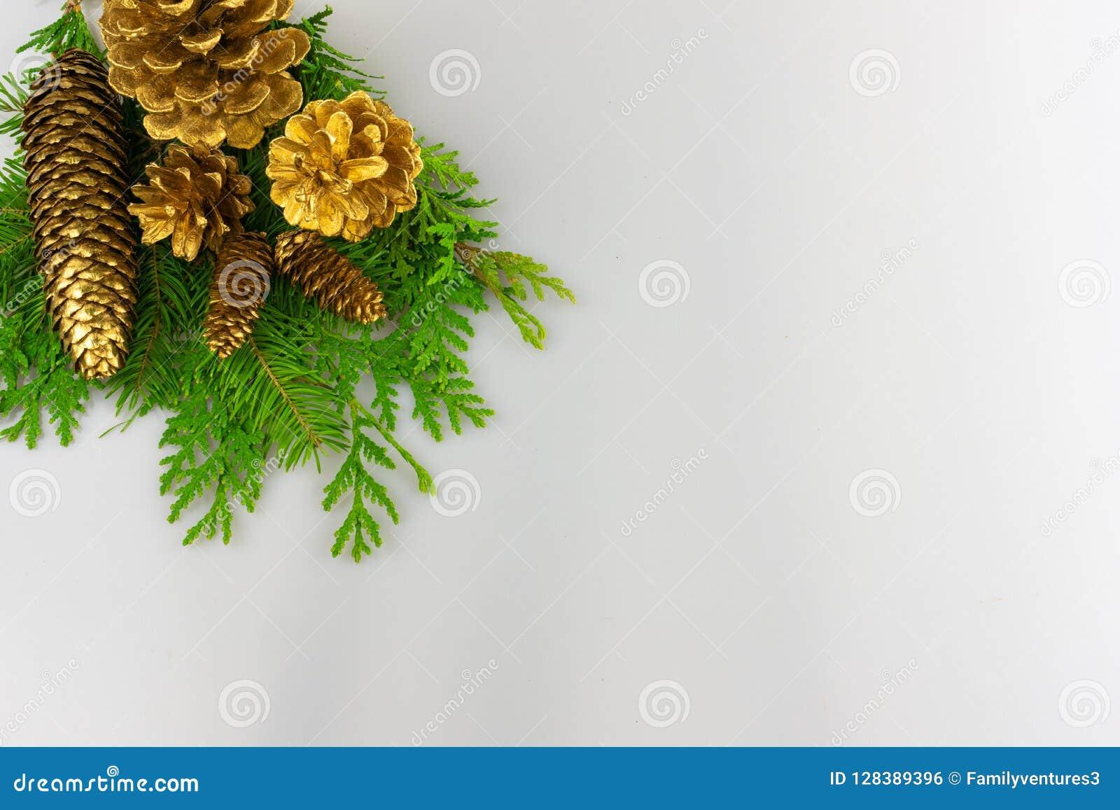 Cônes de pin d or sur la verdure dans le coin gauche supérieur