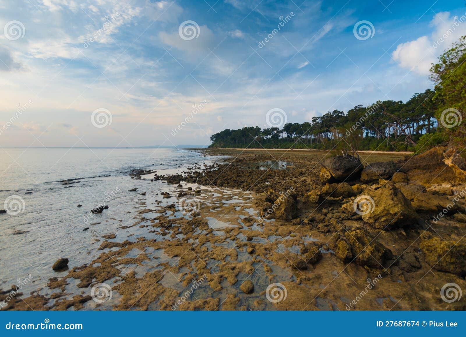 Côte rocheuse d Andaman d horizontal d île de Neil