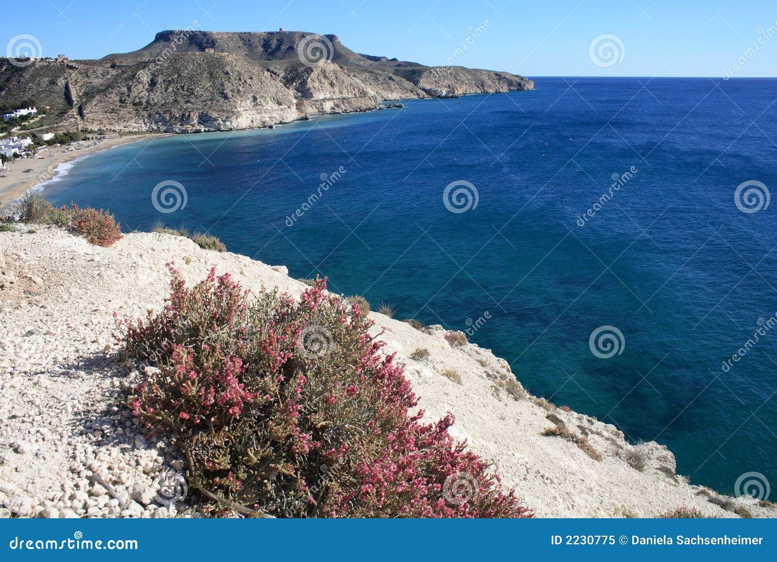 Côte rocheuse d armada d Agua