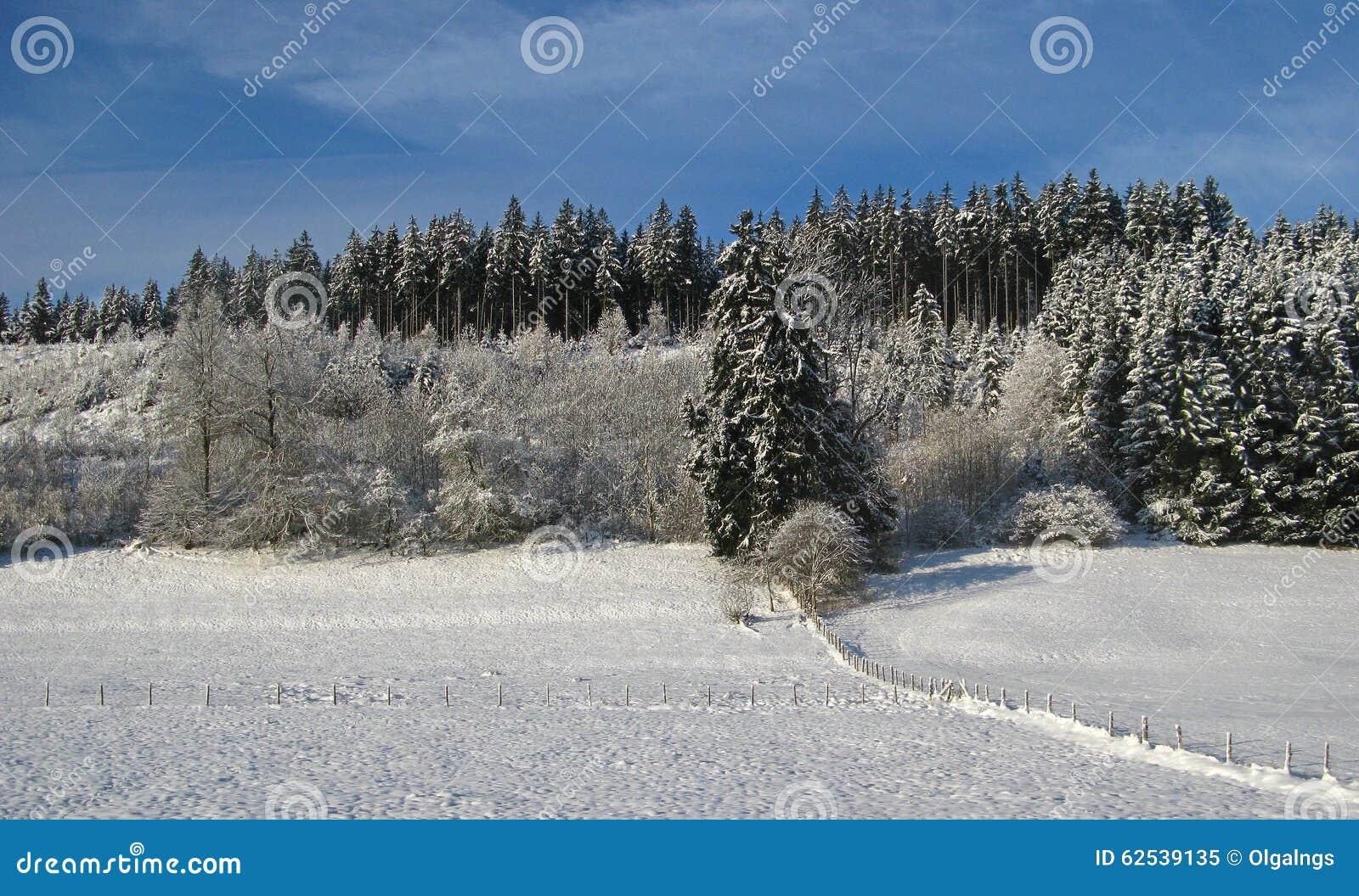 33c 1月横向俄国温度ural冬天