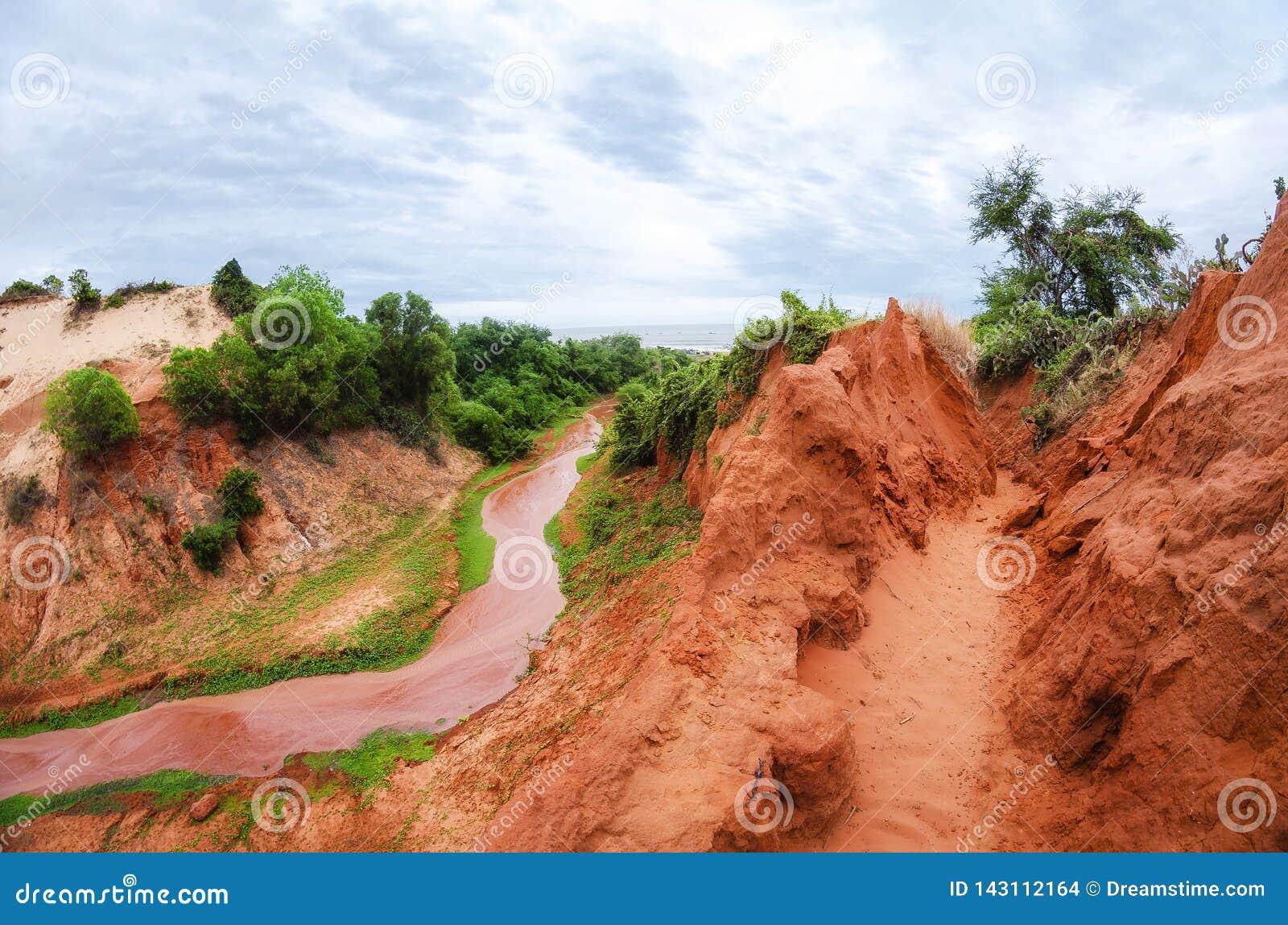 C?rrego que corre abaixo de uma garganta vermelha com o trevo verde na costa em Vietname perto de Mui Ne