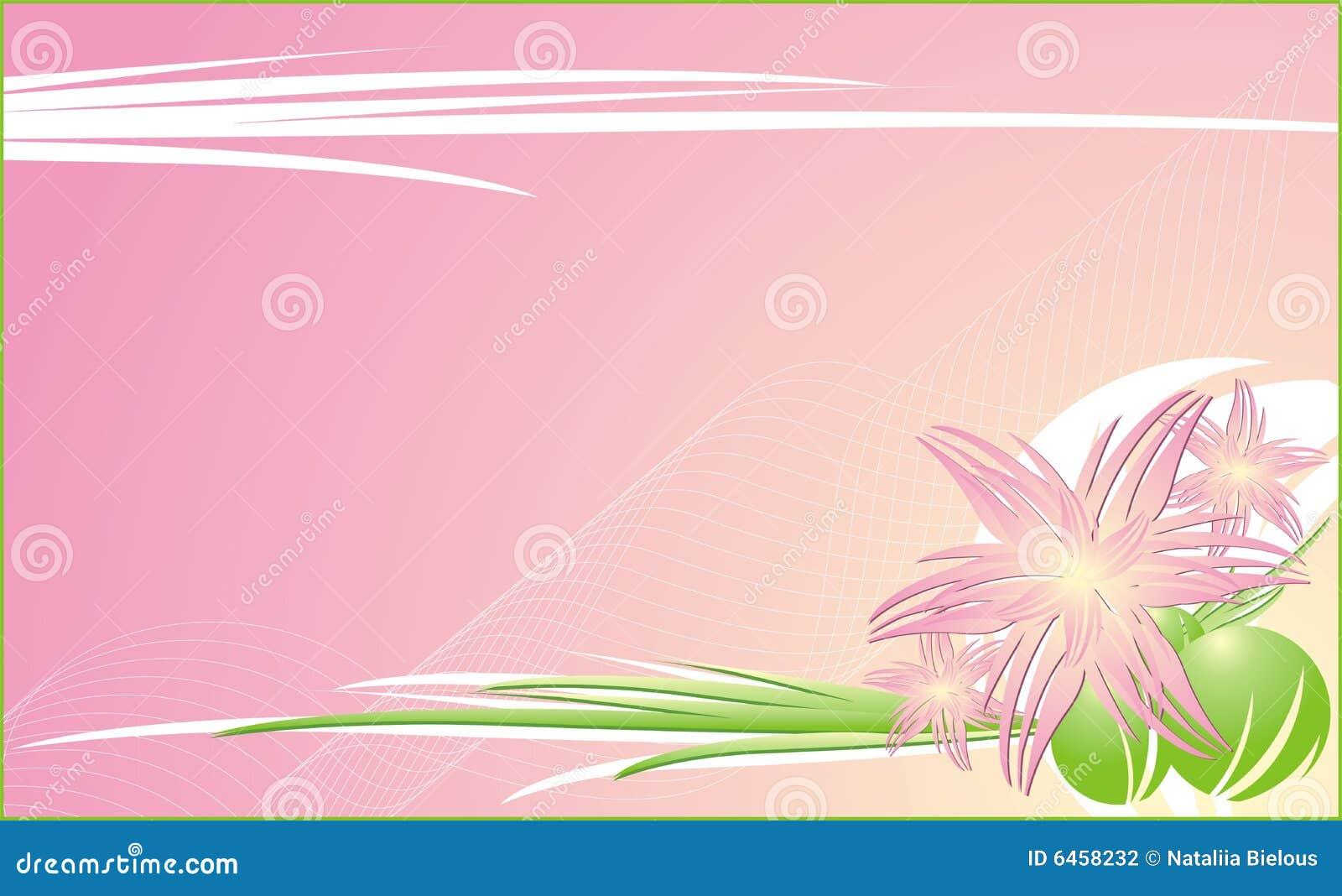 C tła chryzantem kwiecisty dekoracyjny
