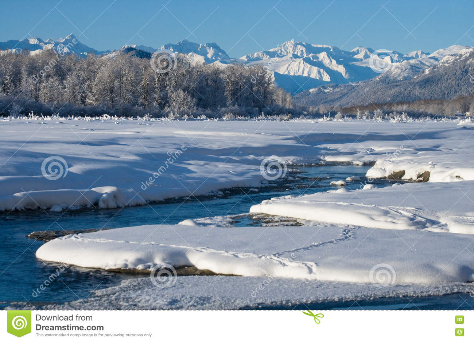 33c ural χειμώνας θερμοκρασίας της Ρωσίας τοπίων Ιανουαρίου ΗΠΑ albedo