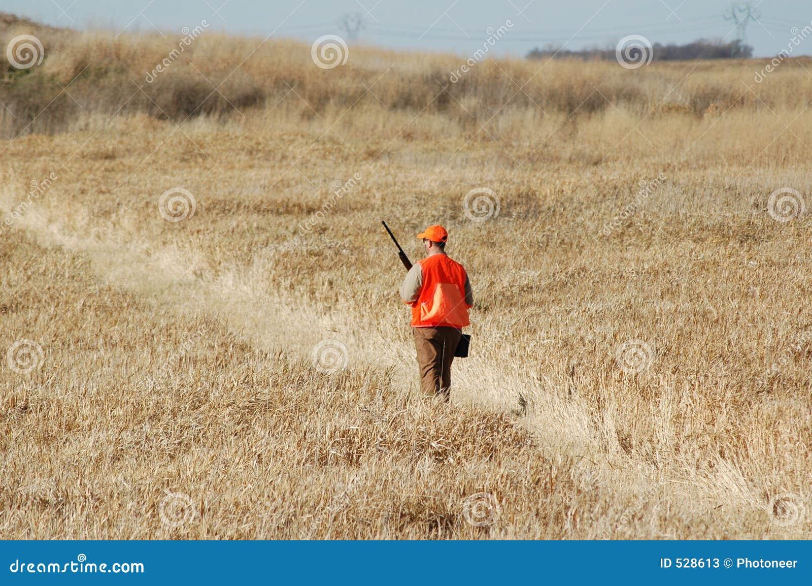 Caçador do pássaro do Upland