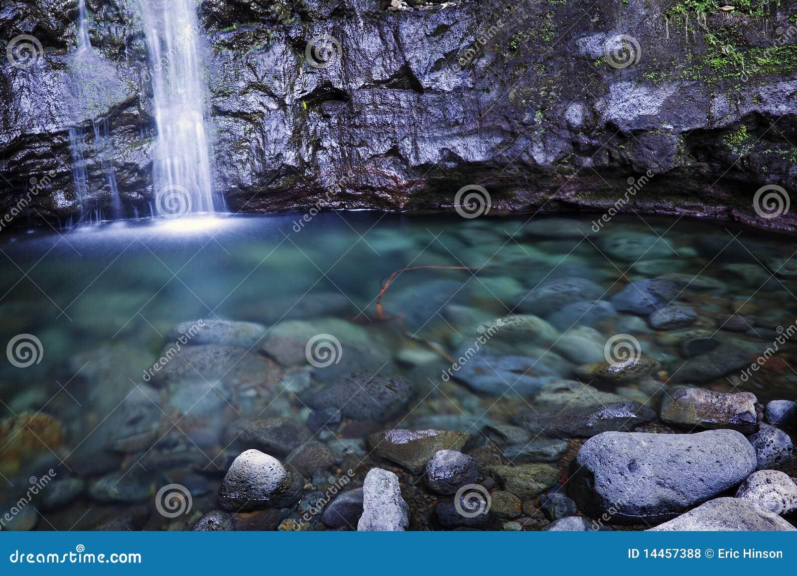 Caídas y piscina, Oahu, islas hawaianas de Manoa