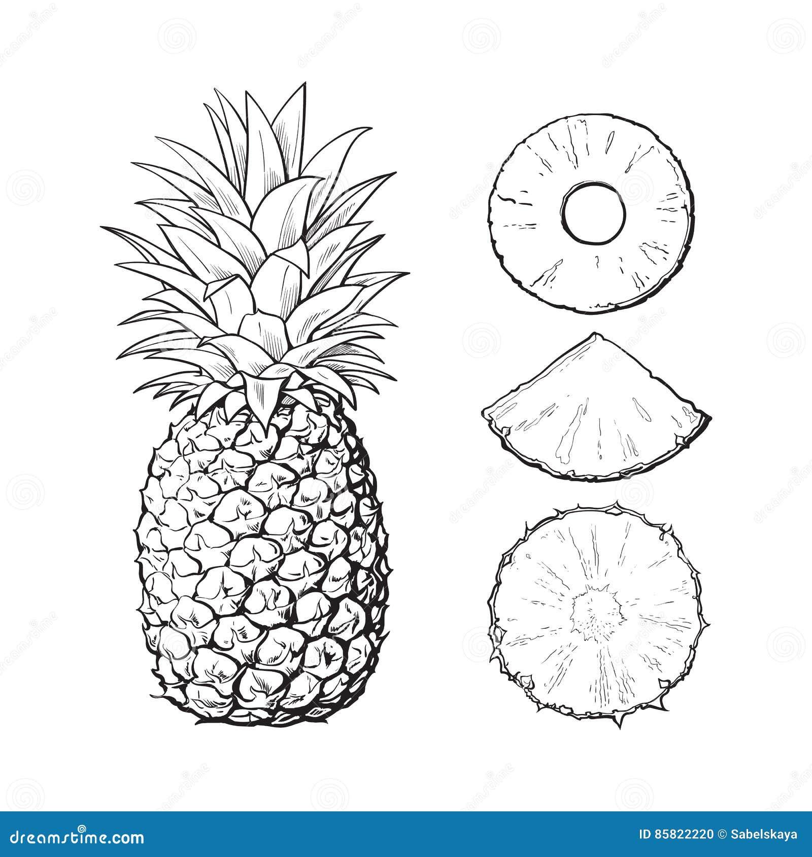 Ananas Rysunek cały ananas i plasterki obrani -, unpeeled, klin, wektorowa