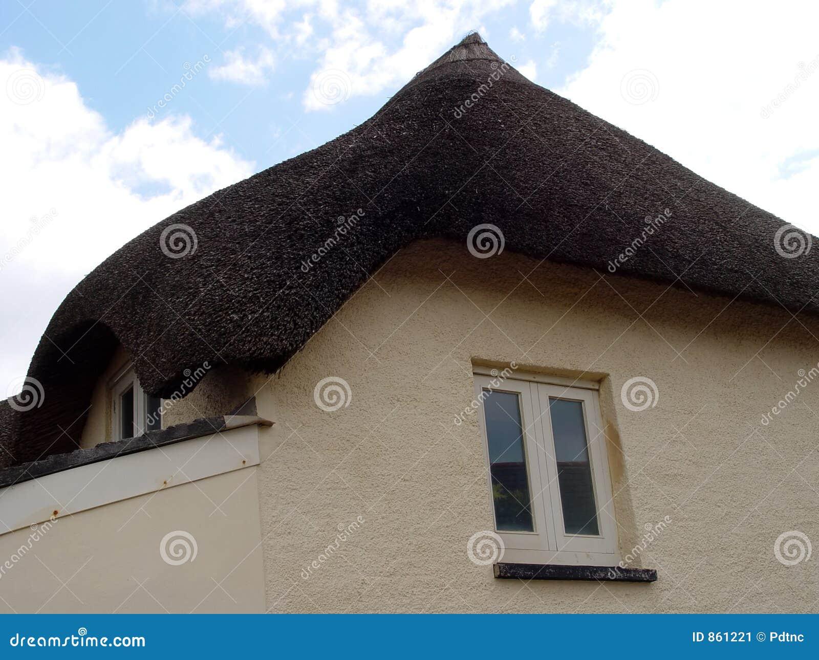 Cabaña cubierta con paja