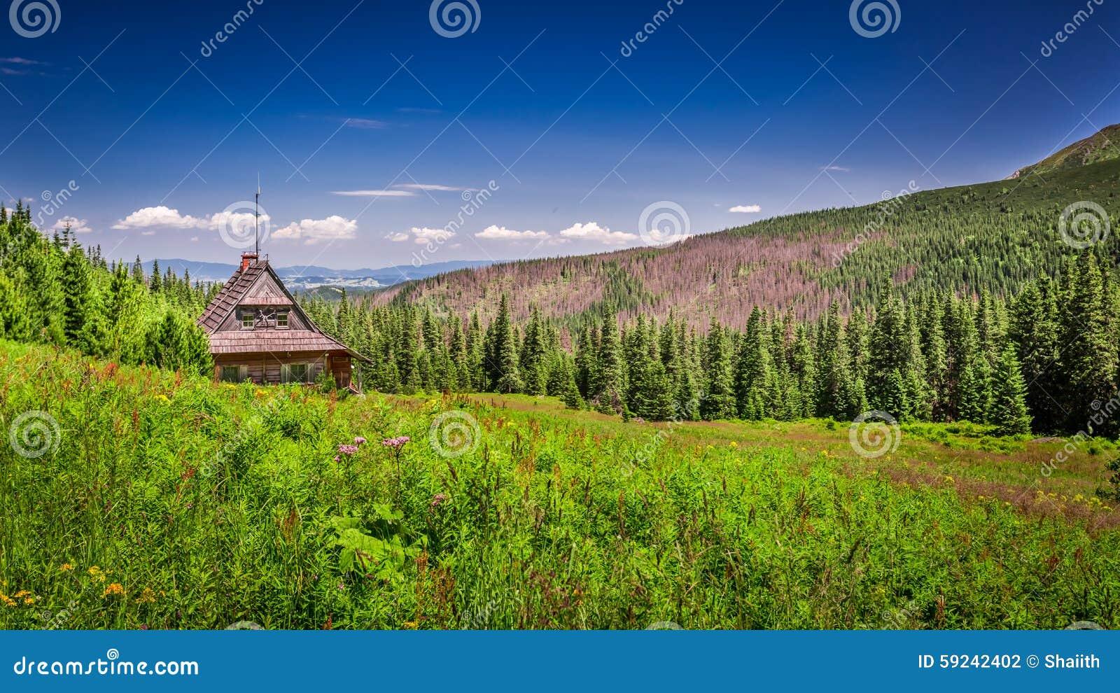 Download Cabaña En Un Valle De La Montaña Foto de archivo - Imagen de valle, verano: 59242402