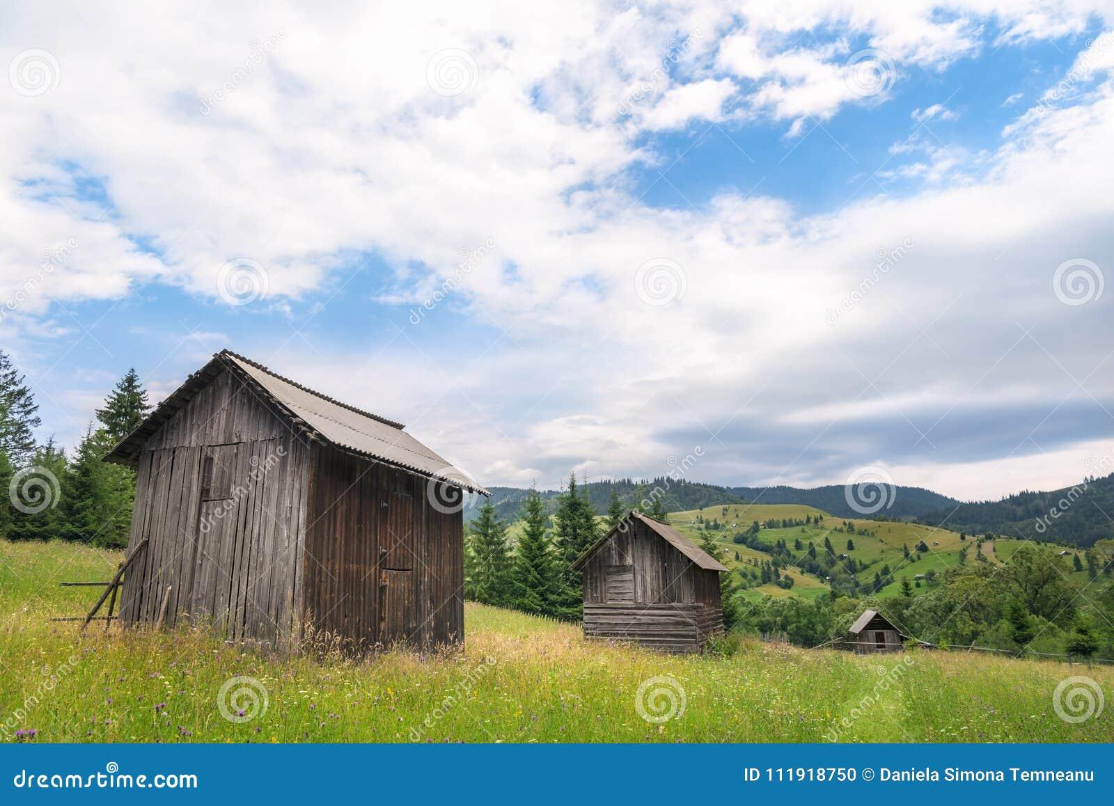 Cabañas de madera en una línea en un prado floreciente