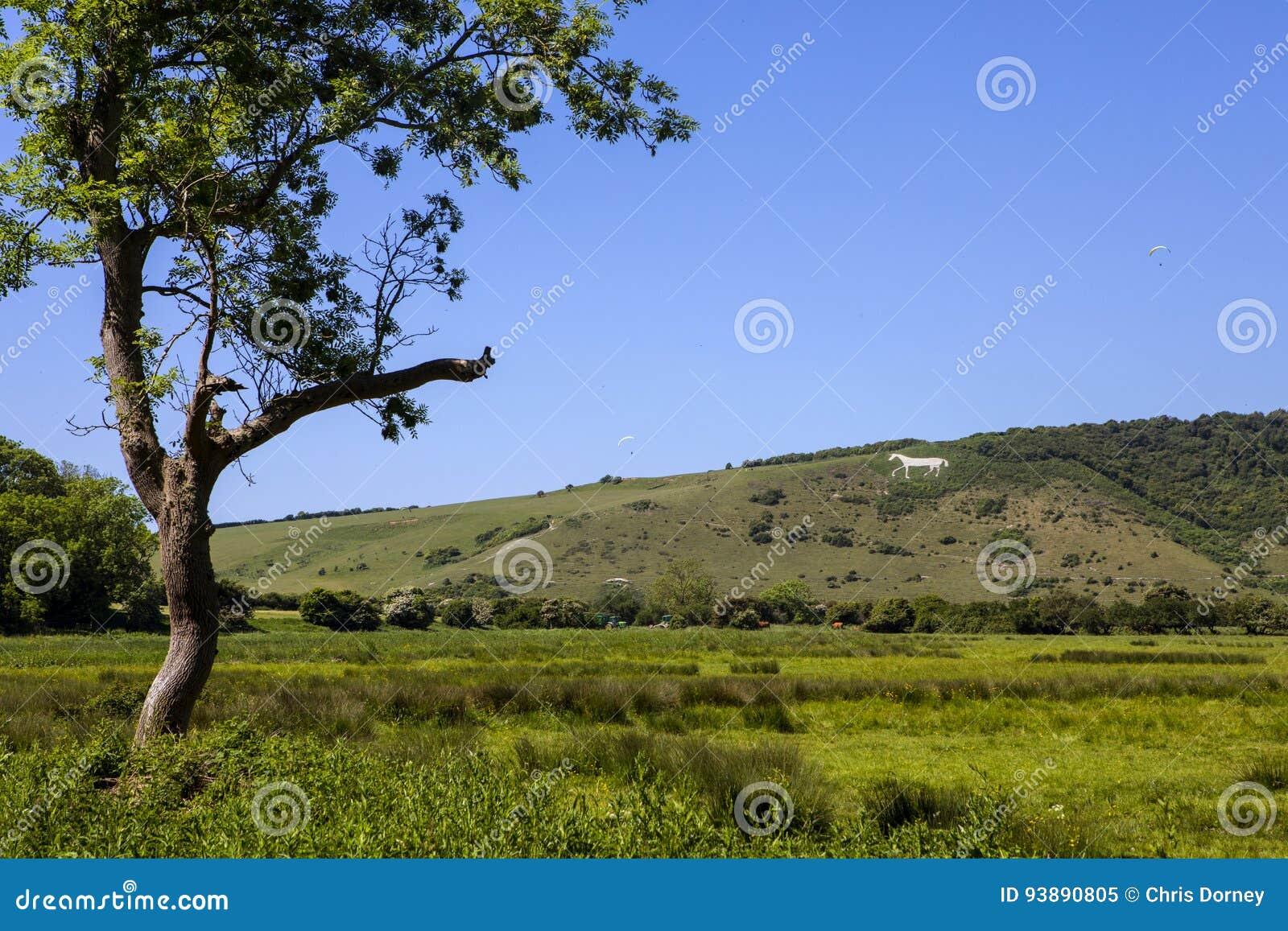 Caballo blanco de Litlington