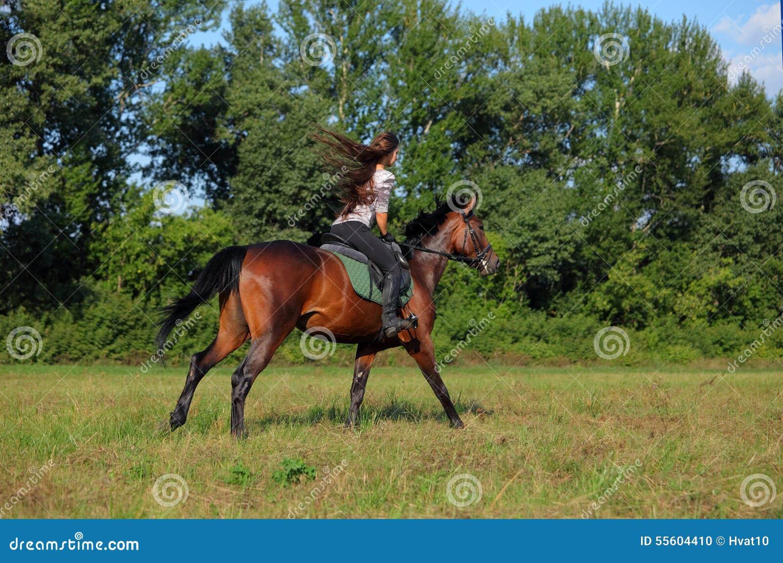 Caballo de silla de montar del montar a caballo de la mujer joven foto de archivo imagen de - Silla montar caballo ...