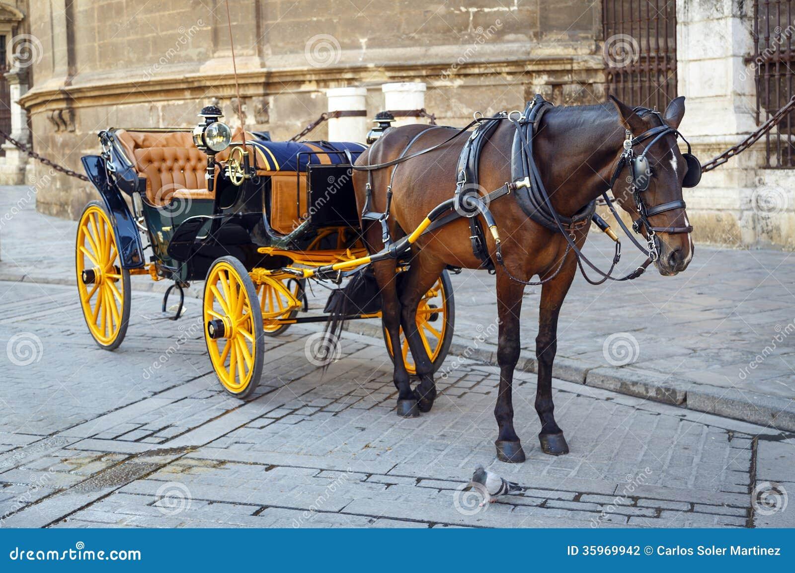 Caballo negro y carro turístico tradicional en Sevilla