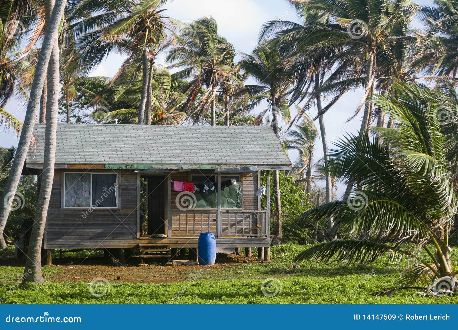Cabana house with palm trees nicaragua