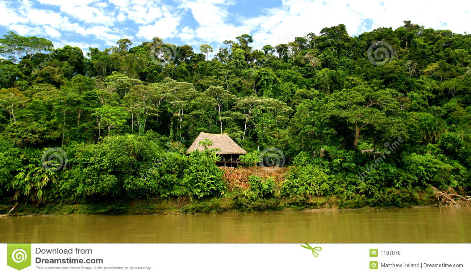 Cabana na floresta húmida