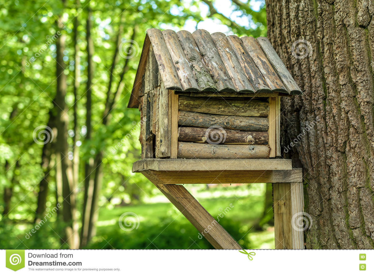 cabane dans un arbre en bois pour des oiseaux photo stock image 77916215. Black Bedroom Furniture Sets. Home Design Ideas