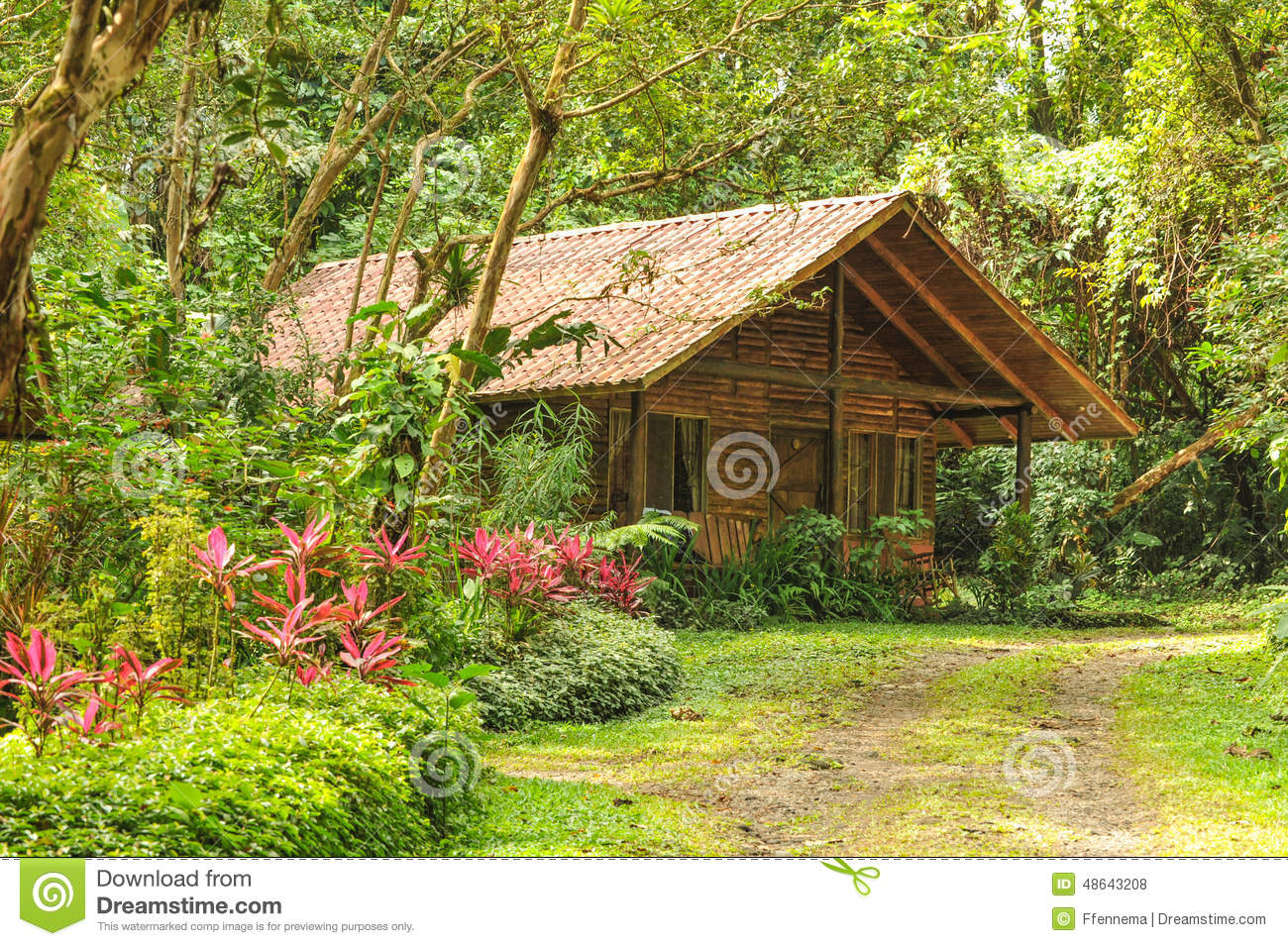 cabane en rondins en bois dans une for t tropicale tropicale photo stock image du home faune. Black Bedroom Furniture Sets. Home Design Ideas